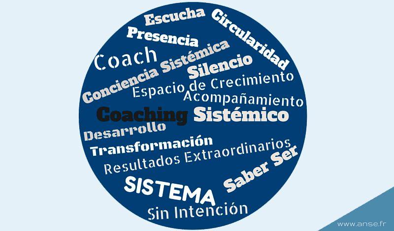 Programa de Coaching Sistémico 2017 - Escuela Metasystème de Alain Cardon