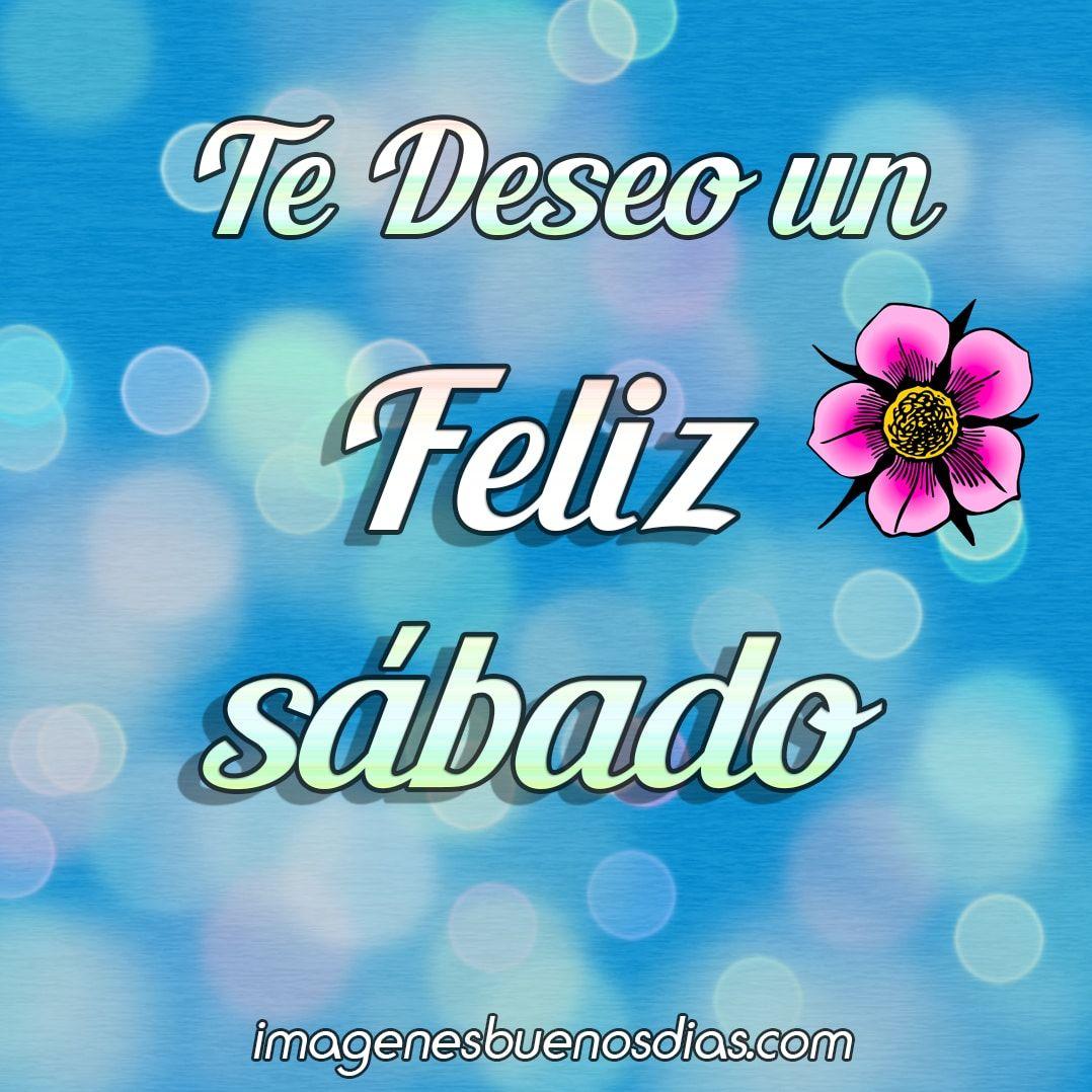 580 Ideas De Feliz Sábado En 2021 Feliz Sábado Saludos De Buenos Dias Buenos Dias Feliz Sabado