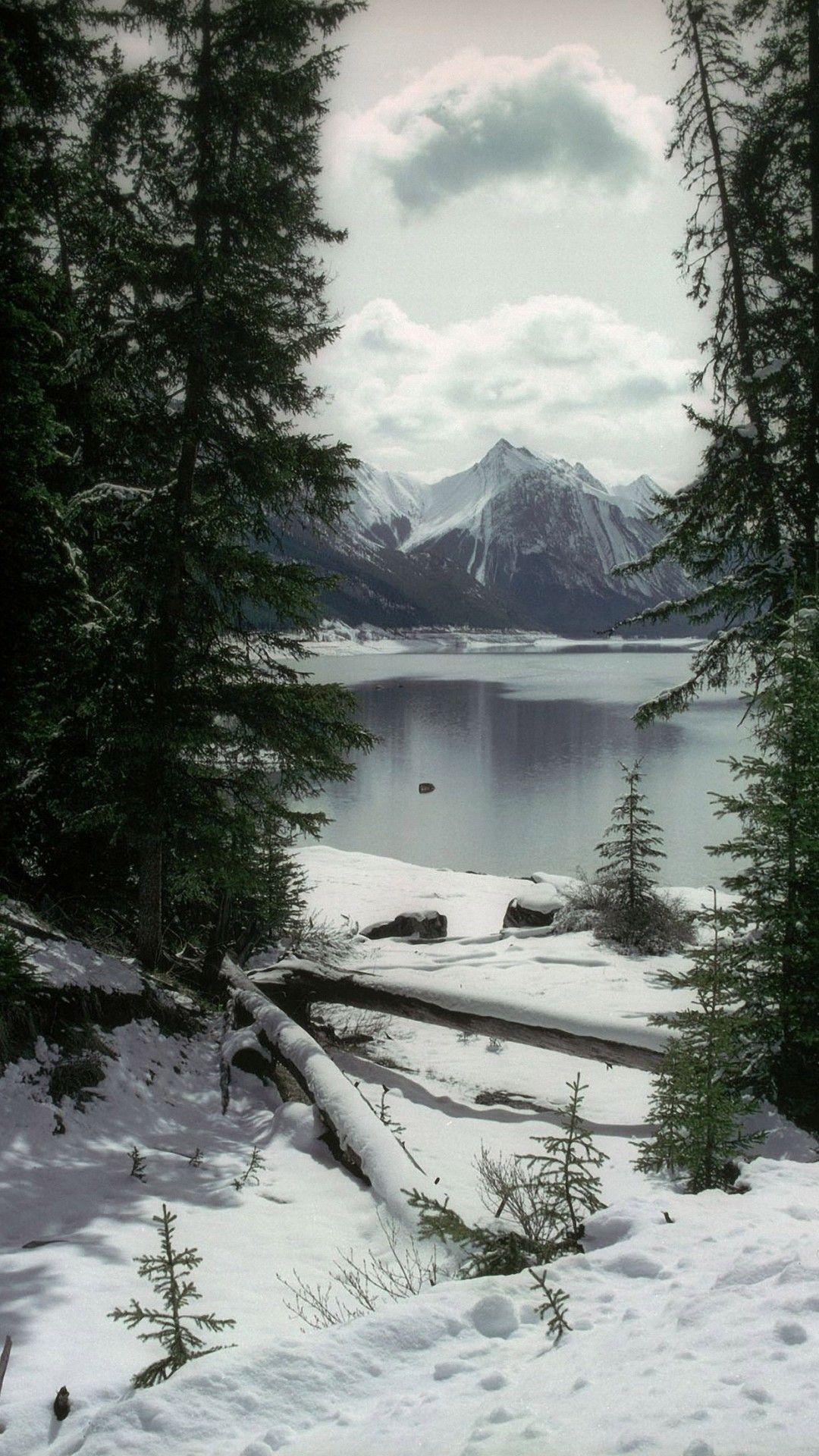 Photo of Fondo de pantalla para iPhone Pretty Winter | ipcwallpapers