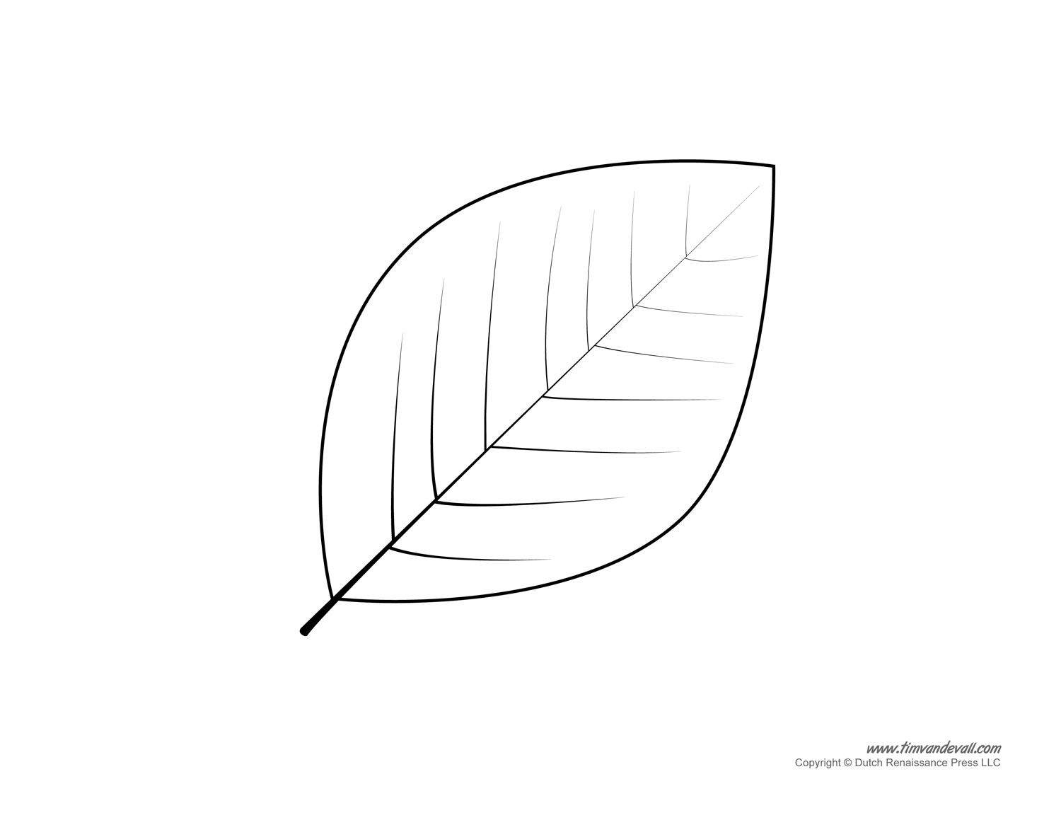 picture regarding Leaf Template Printable Free titled leaf template printable Artwork Leaf template, Leaf template