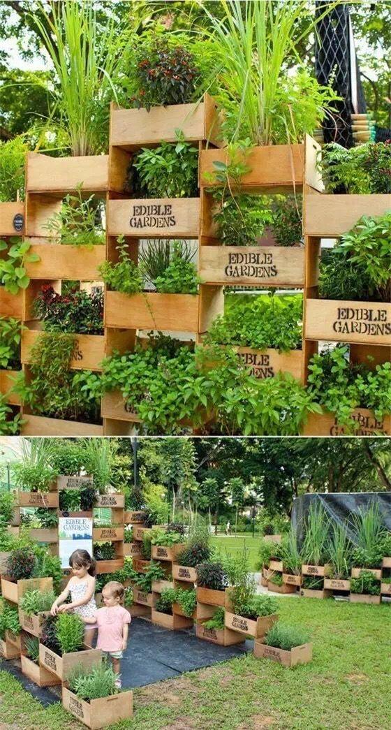 Pin by Joanna Liu on My Garden | Pinterest | Gardens