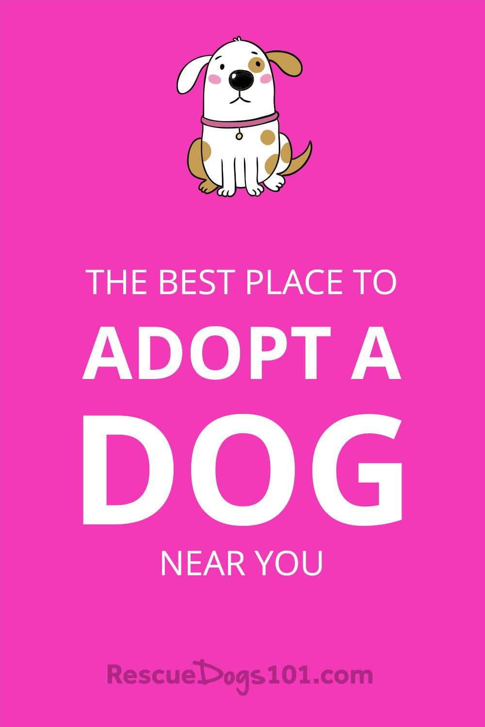 Reputable Local Dog Rescues And Shelters Dog Adoption Near Me