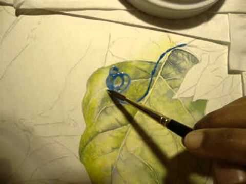 How To Paint Around Veins Of A Leaf In Watercolor Part 2