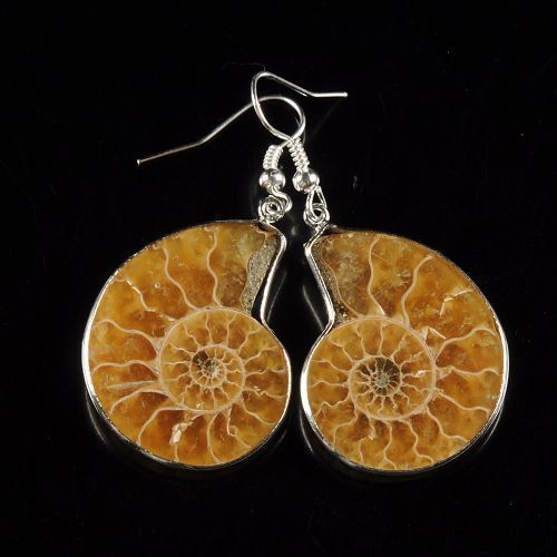 Ammonite Fossil Earrings by TheTinkersShop on Etsy, $25.00