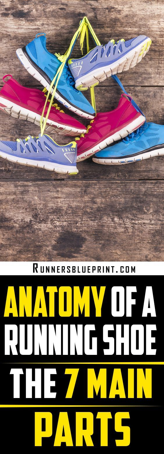 Anatomy of a Running Shoe - The 7 Main Parts | Pinterest