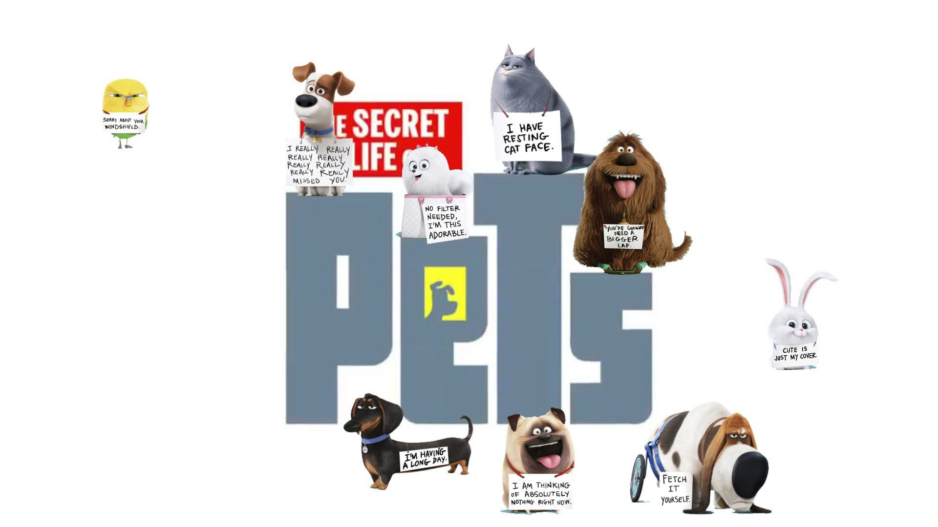 The Secret Life Of Pets Snowball And Max Chloe Wallpaper Hd Secret Life Of Pets Secret Life Pets