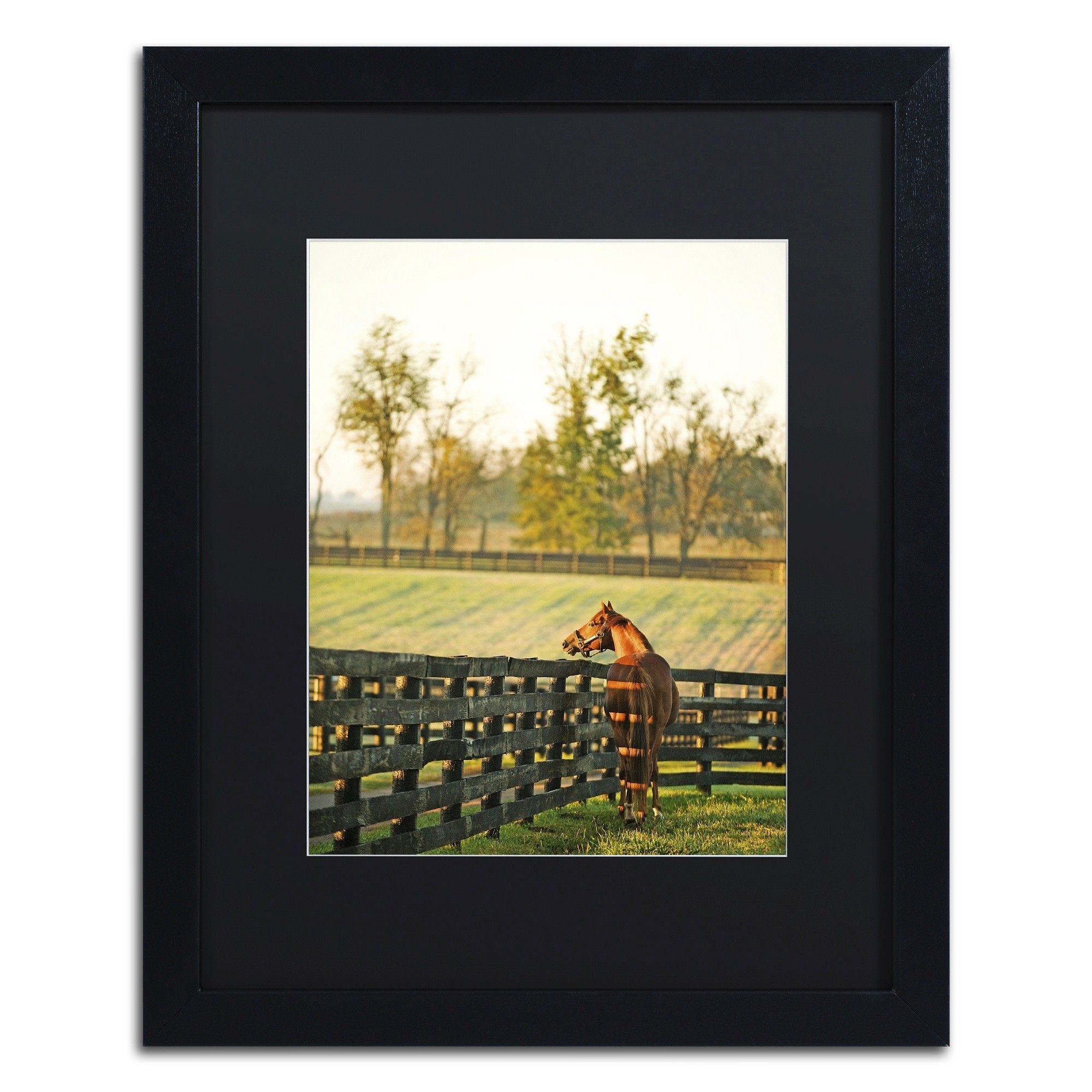 Kentucky Horse Sunrise by Preston Framed Photographic Print