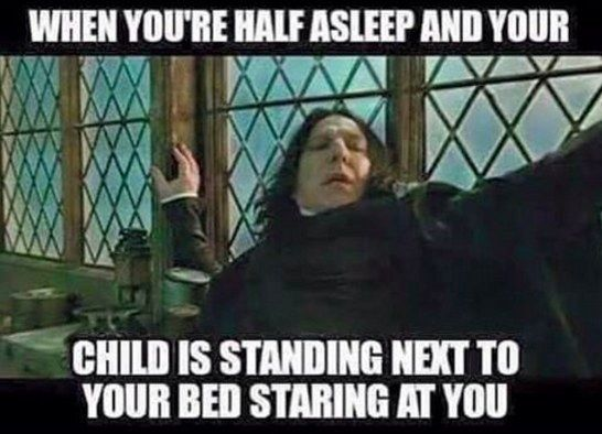 fe827a8d8b3004c4fa9ff5beb720e139 100 parenting memes that will keep you laughing for hours memes