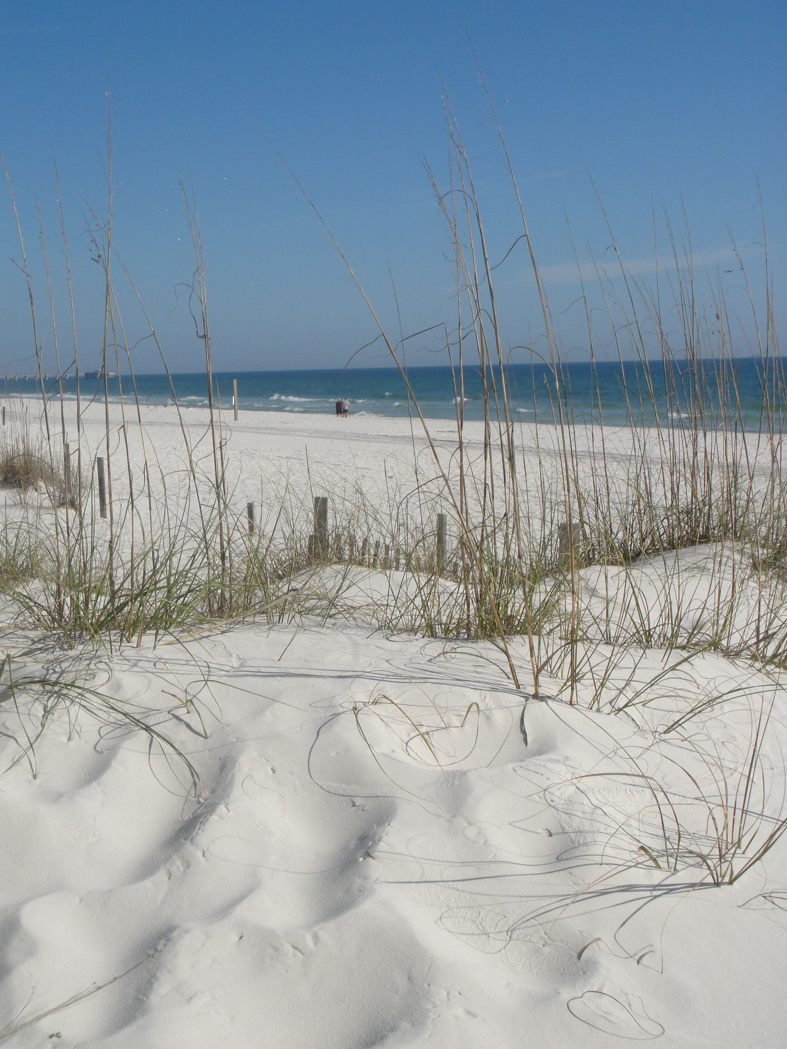 Orange Beach Alabama Near Gulf Ss The Sugar White Sands Here Are Unrivaled Outside And Florida
