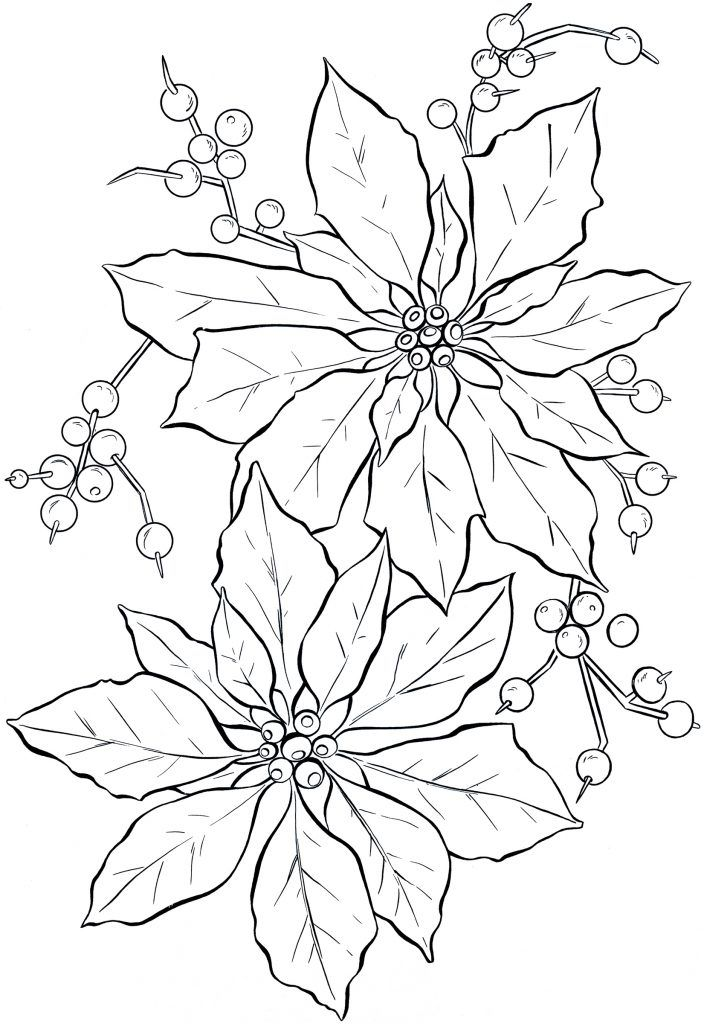 Free Printable Poinsettia Coloring Pages For Kids Christmas
