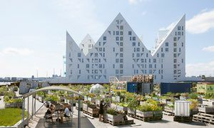 The Isbjerget (the Iceberg) residential building, in Aarhus's old docks, overlooks the Ø-Haven city garden.