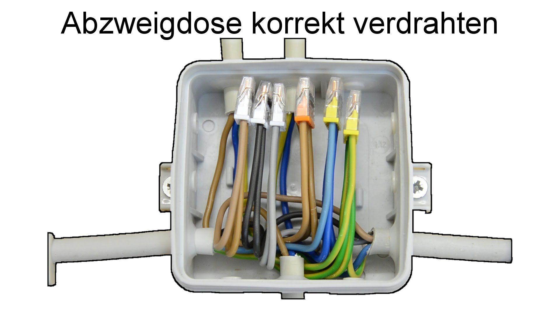 Netzwerkkabel Selber Machen : abzweigdose installieren und verdrahten interior elektroinstallation selber machen ~ Watch28wear.com Haus und Dekorationen