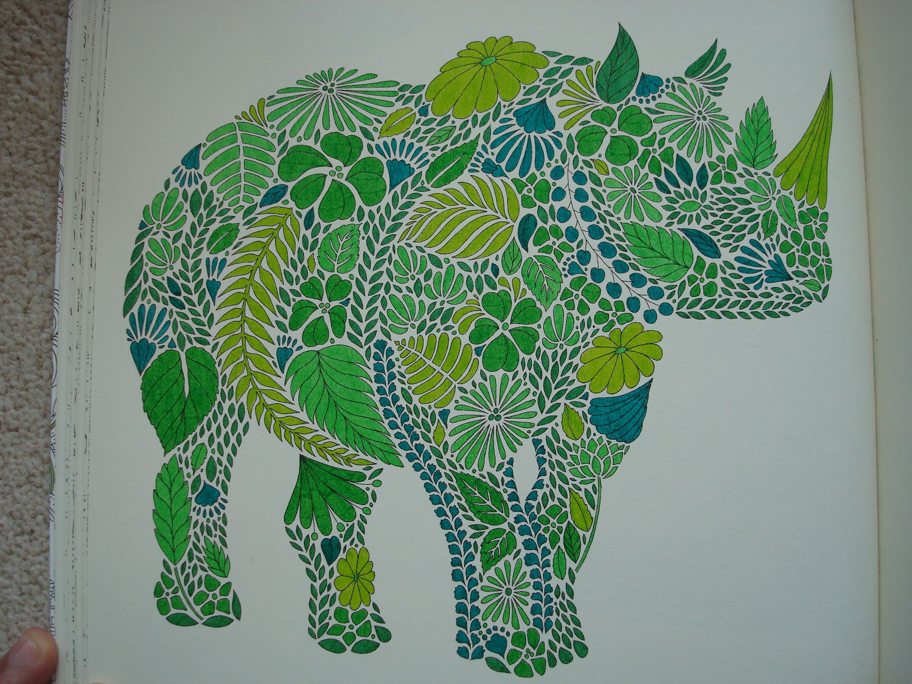 Coloring book animal kingdom - Millie Marotta S Animal Kingdom Google Search