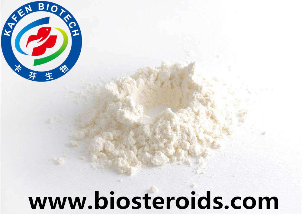 Muscle Building Injectable Anabolic Steroids Powder Testosterone