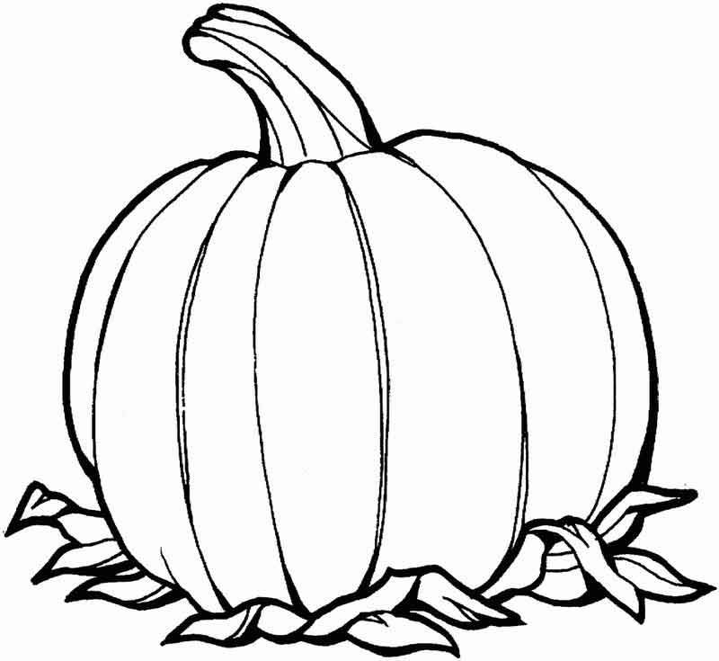 Printable Pumpkin Coloring Page From Fruits Coloring Pages