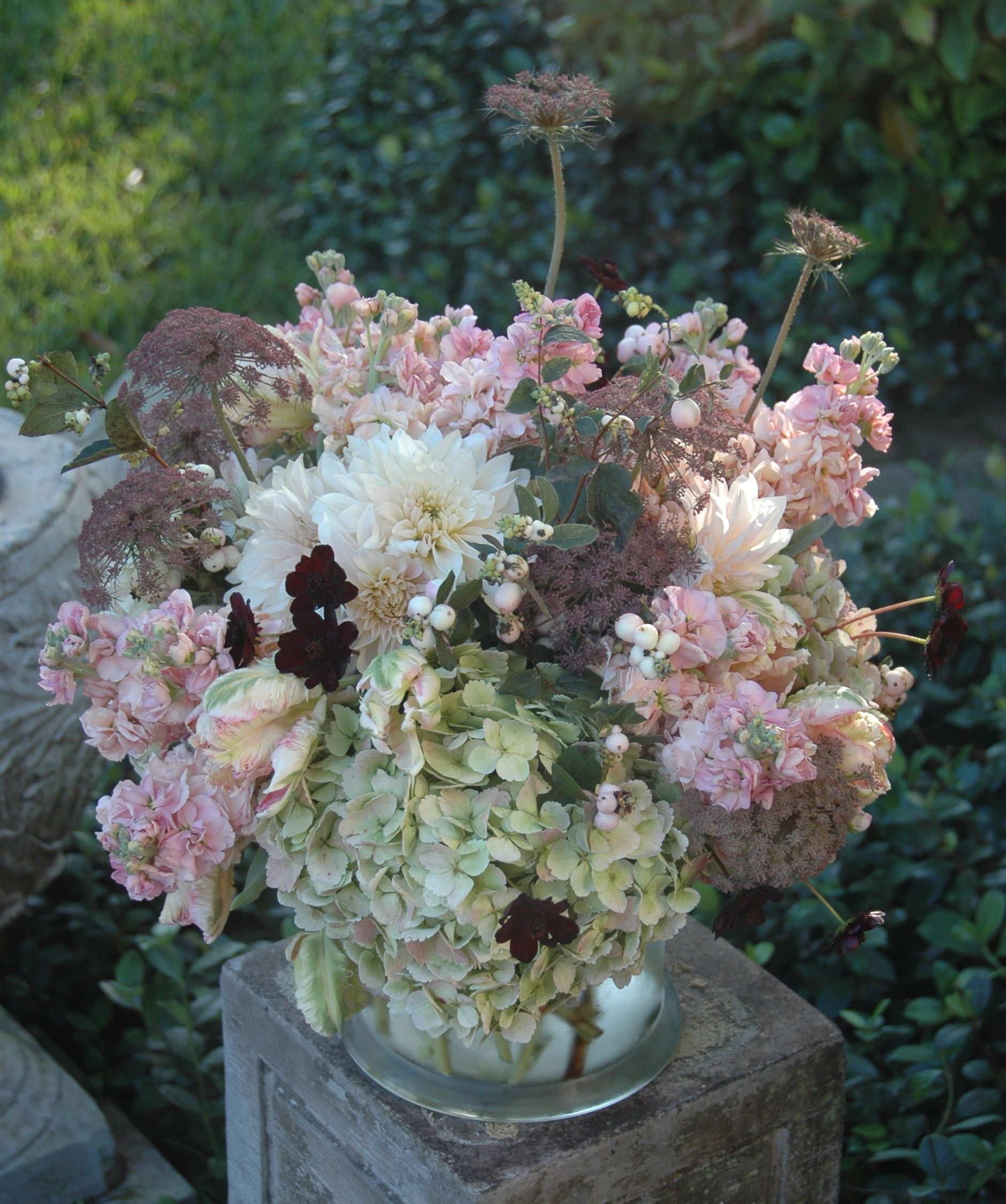 Table arrangement of antique hydrangeas, peach stock, pink/green ...