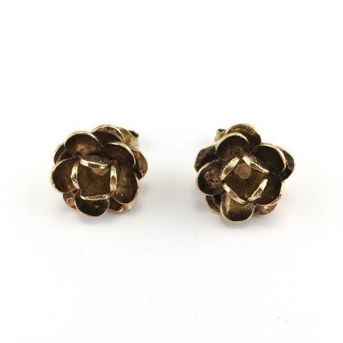 Earrings (5283)
