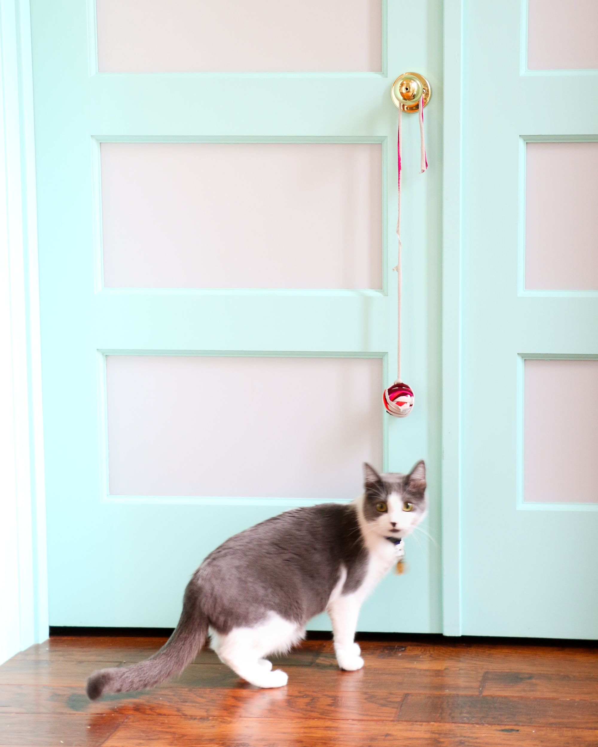 11 Cat Crafts That Are Perfect For Your Feline Friend Diy Cat Toys Cat Crafts Cat Diy
