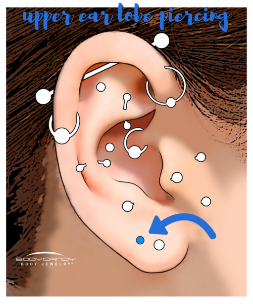 Encyclopedia Of Body Piercings Upper Ear Lobe Piercing Piercing Piercings Faciais Ideias Para Piercings E Piercings