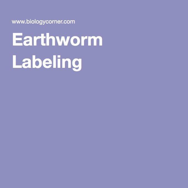 Label Earthworm Parts Worksheet Hs Science Biology Pinterest