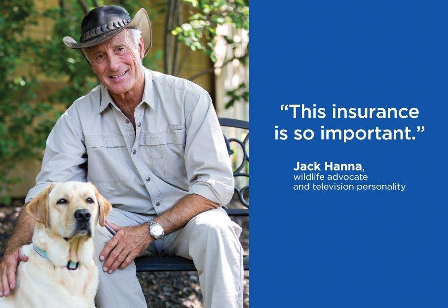 Pet Insurance | Nationwide is America's Best Pet Insurance ...