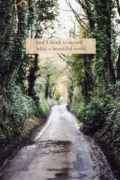 What a beautiful world
