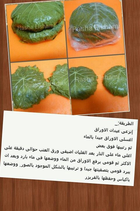 تفريز ورق العنب Baby Food Recipes Egyptian Food Arabic Food