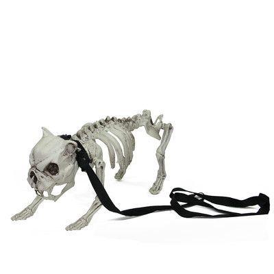 Northlight Distressed Dog Skeleton on Leash Indoor/Outdoor Halloween