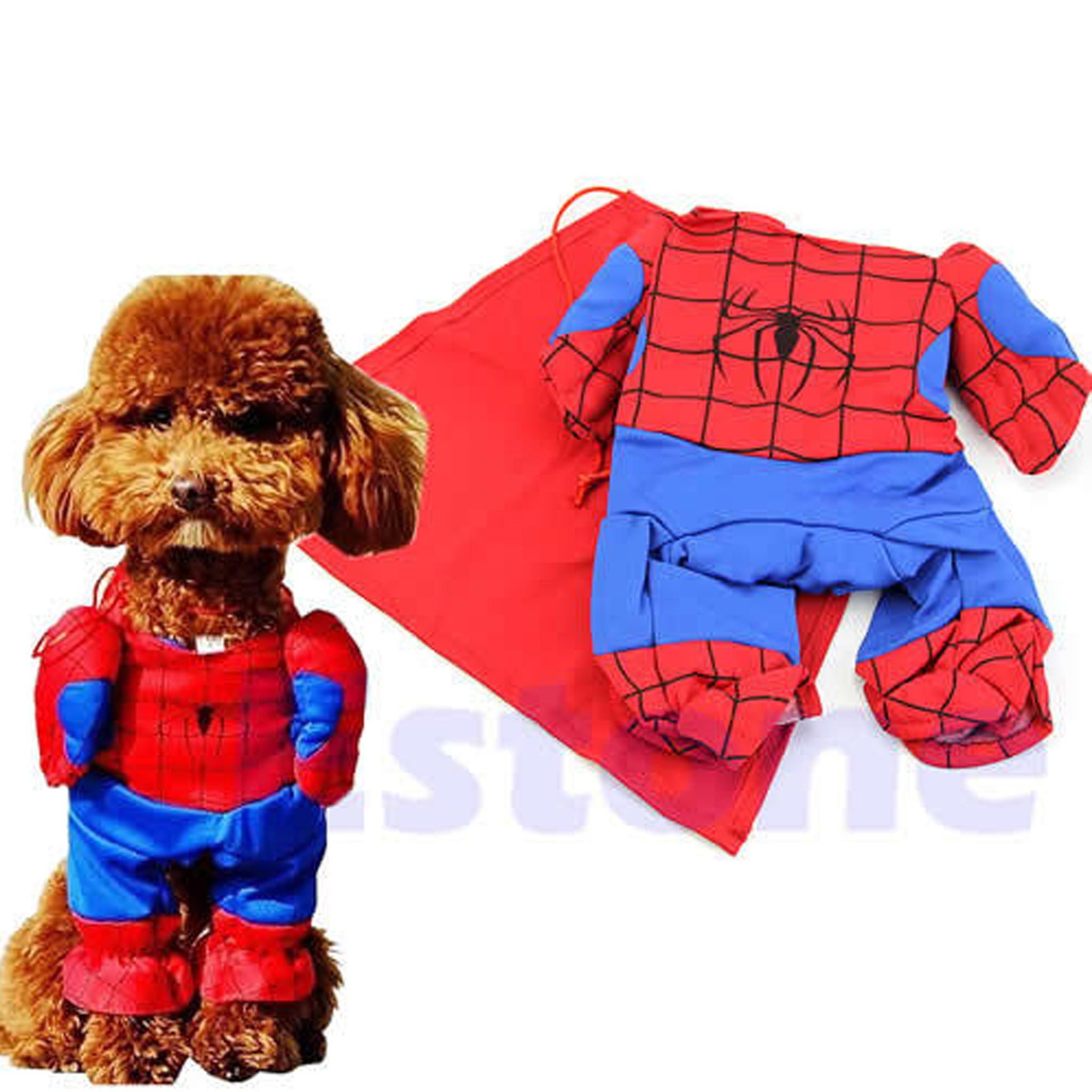 Cat and Dog SpiderMan Costume Pet costumes, Pet clothes