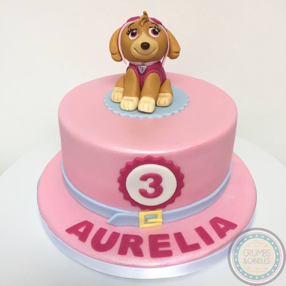 Hand made Skye from Paw Patrol on a vegan chocolate birthday cake