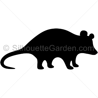 Opossum. Watercolor animals clip art wild native forest   Etsy   Watercolor  animals, Clip art, Opossum
