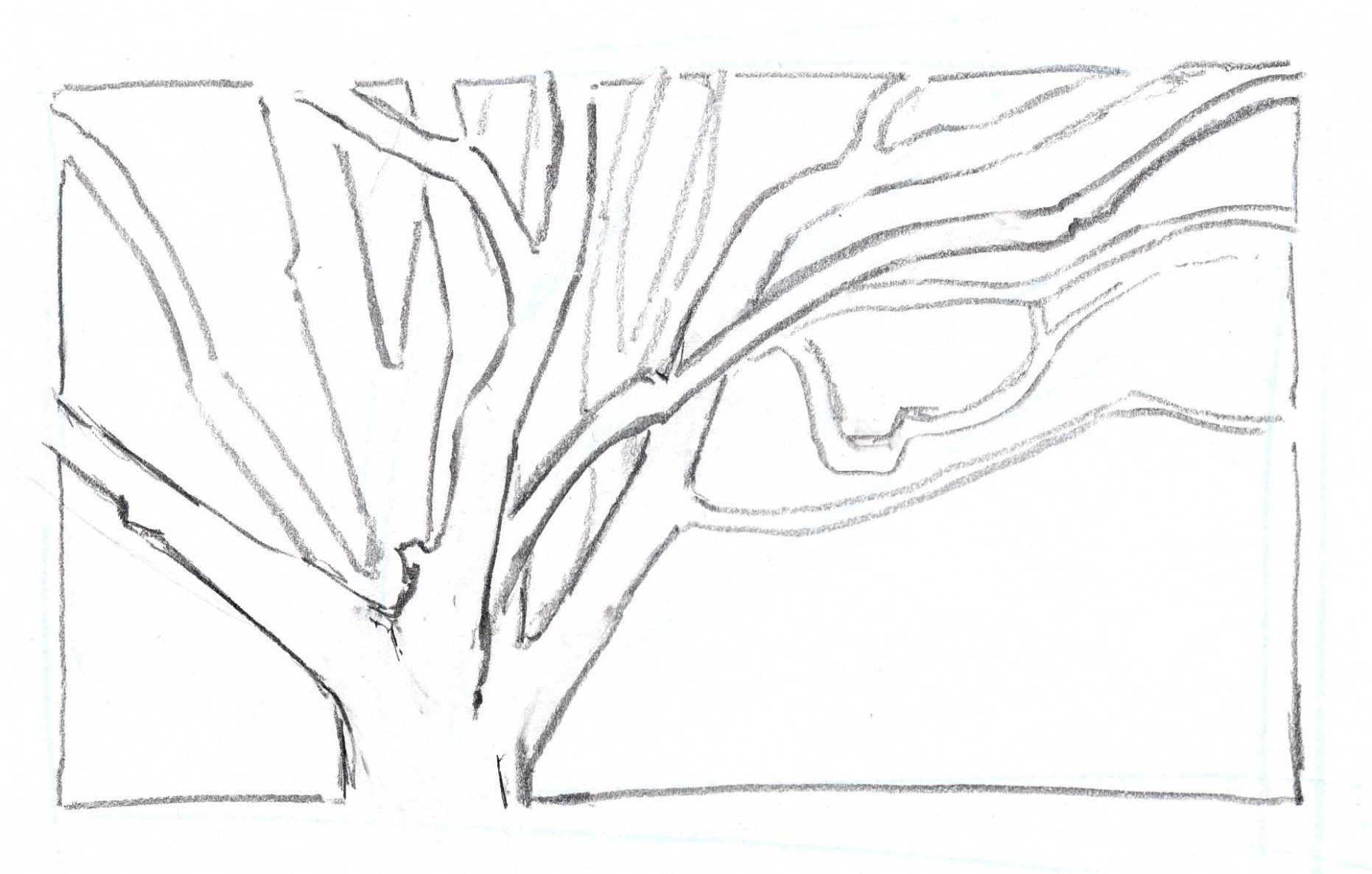 How To Draw Trees Overlapping Branches Tree Drawing Branch Drawing Drawings