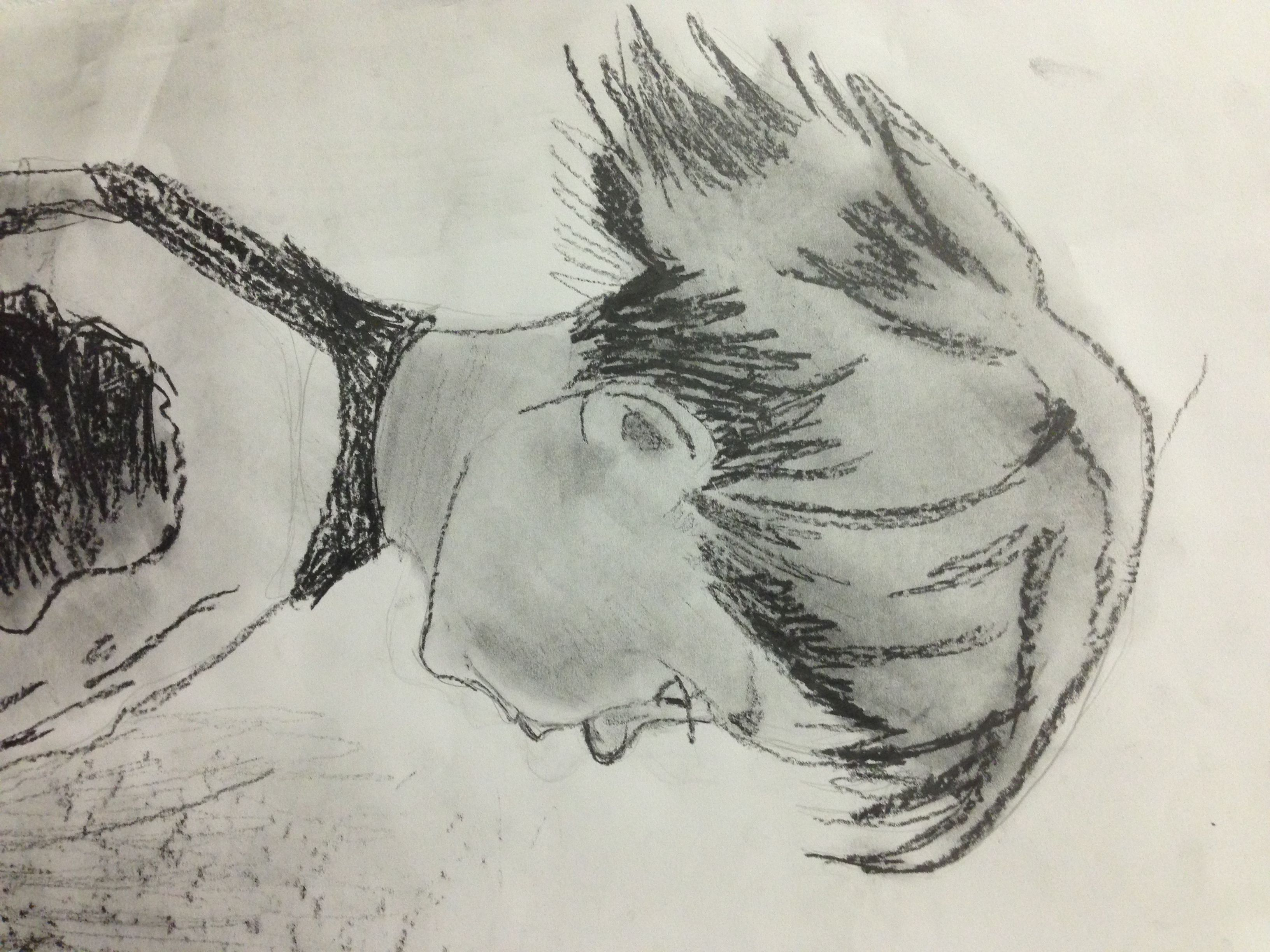 Drawing exercise from our SSSP 2013 Group C.  What talent!  http://www.artlab.info