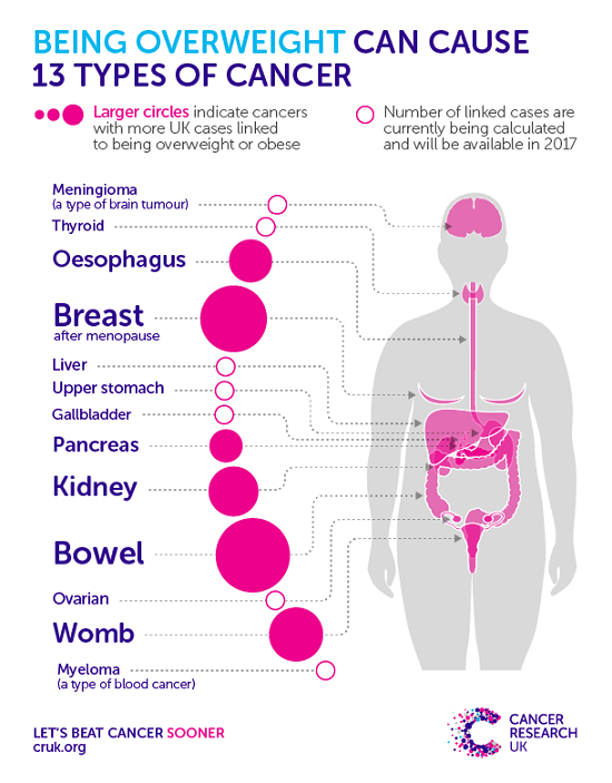 Body Diagram Showing Cancer Types Associated With Obesity -8100