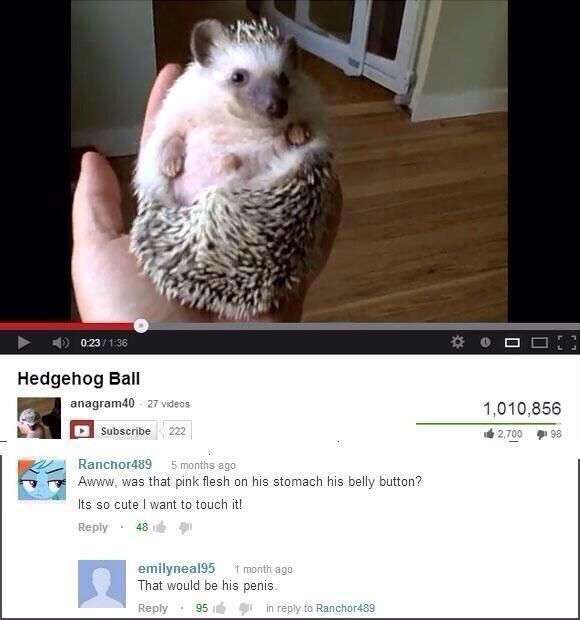 Heghehog Ball Funny Youtube Comments Youtube Comments Funny