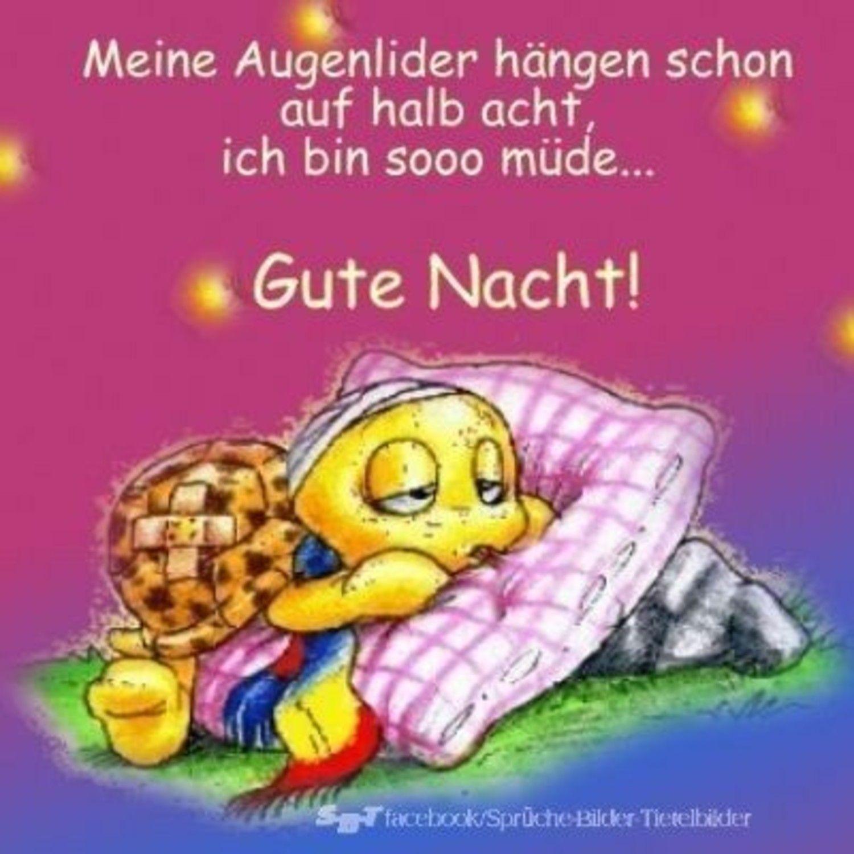 Gute Nacht Bilder Google 312 Gbpicsbilder Com Gute Nacht Bilder Gute Nacht Gute Nacht Lustig