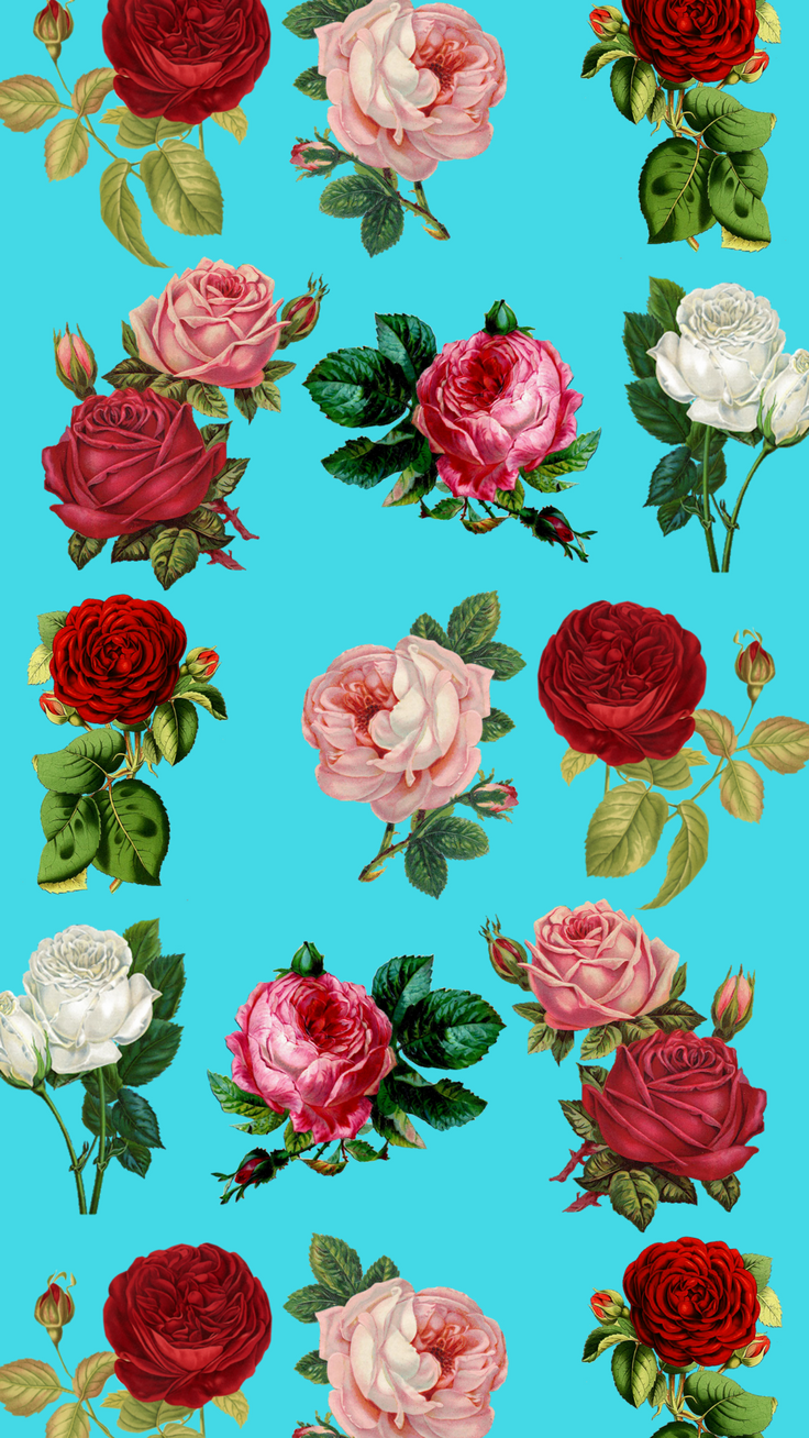 7 Pretty Floral iPhone 8 & 8 Plus HD Wallpapers Floral