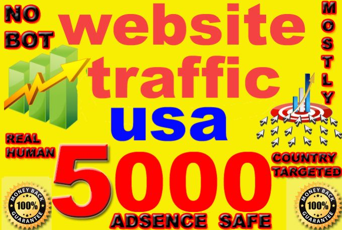 drive Super TARGETED visitors to your Site or Blog for usa only by ddmk021
