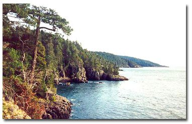 East Sooke is the best day trip hike for the south island. Love it.