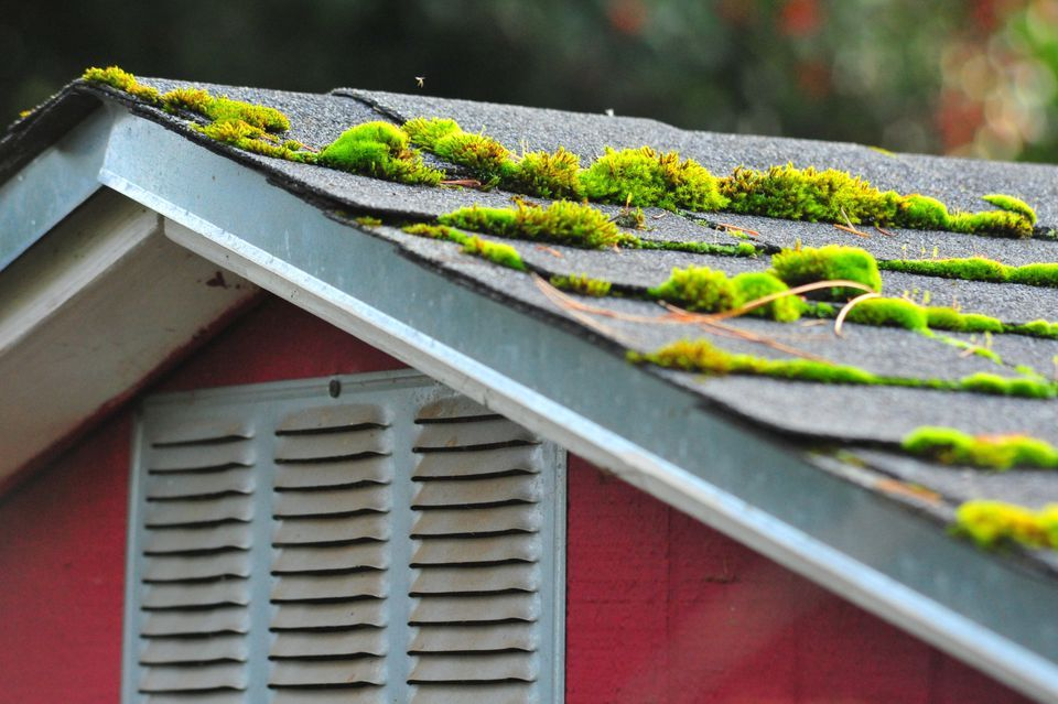 Pin on Home Improvement Madge Roofing Inc