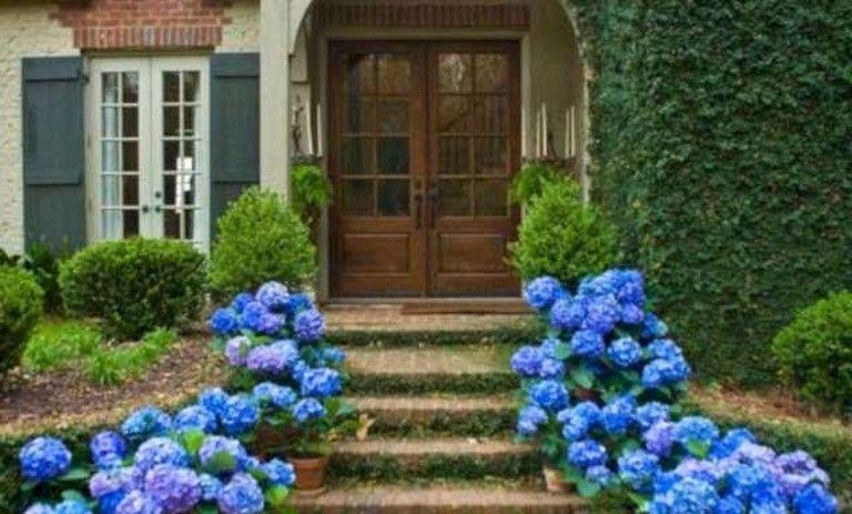 30 Gorgeous Porch Garden Ideas For Your Home Garden Pinterest