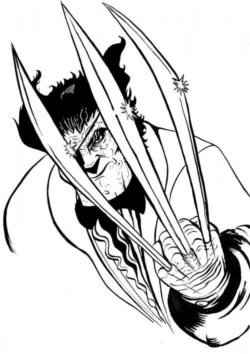 Pin De Bene143betasou Em Wolverines Wolverine Desenho Desenhos