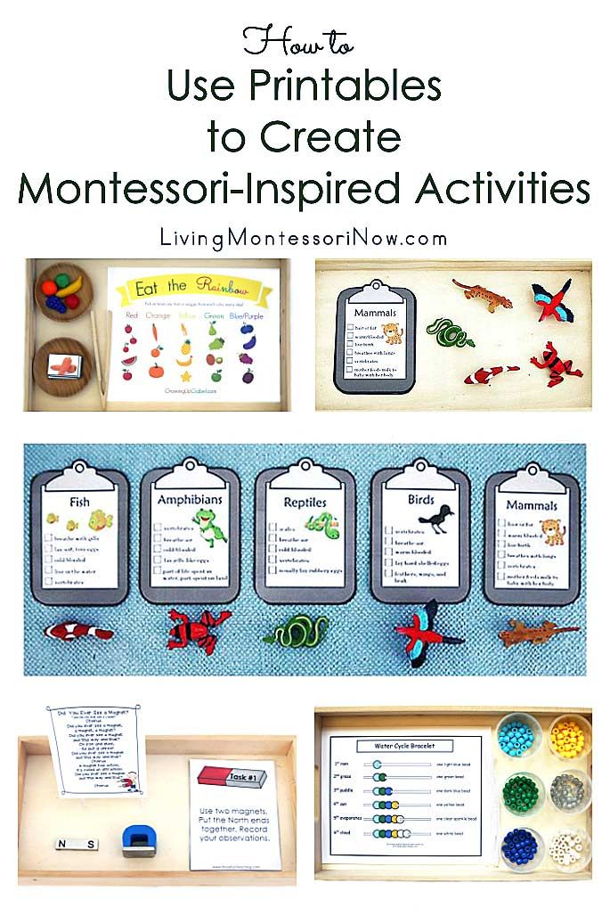Photo of How to Use Printables to Create Montessori-Inspired Activities