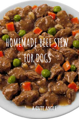 Homemade Beef Stew For Dogs A Cute Angle Raw Dog Food Recipes Healthy Dog Food Homemade Dog Food Recipes