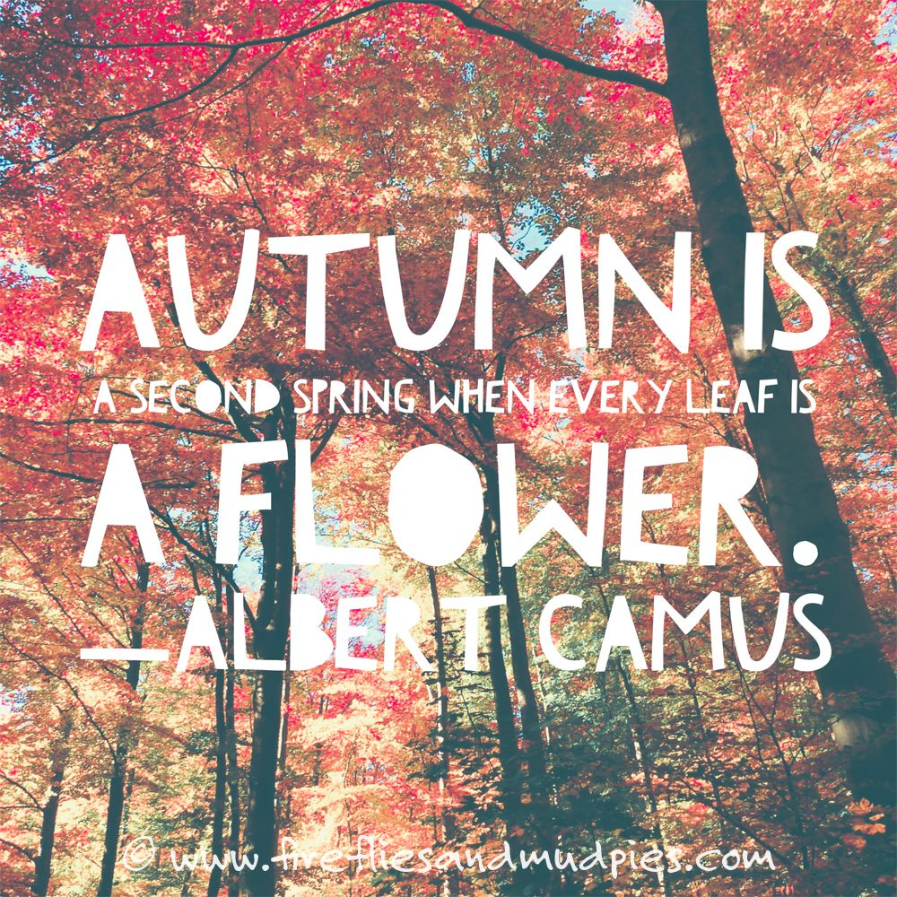 Love this quote for my favorite time of year!