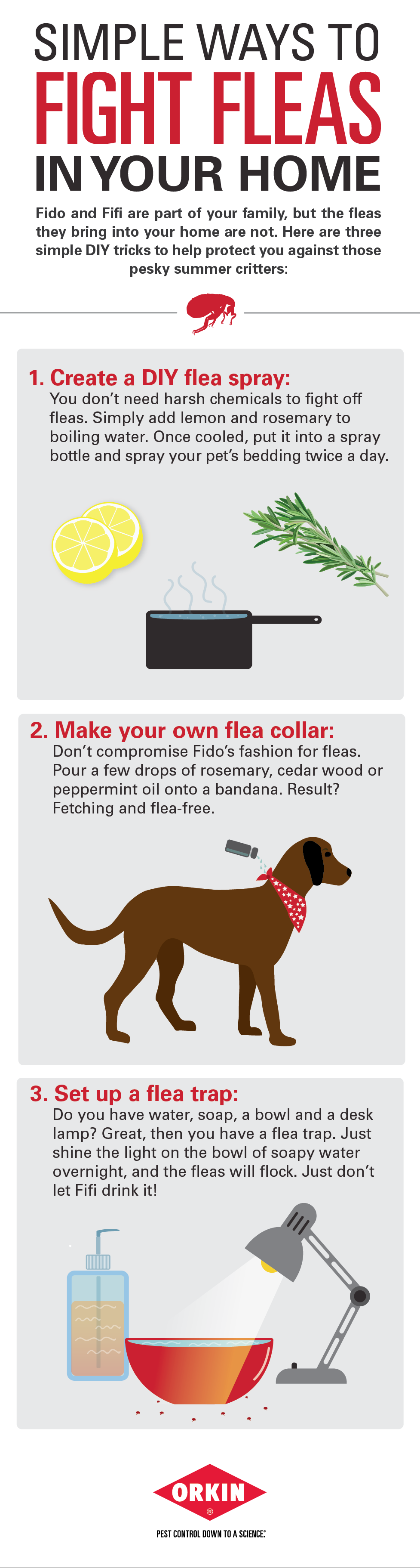 3 Simple Ways To Fight Fleas Diy Fleas Pets Dog Remedies