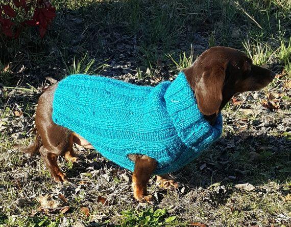 Tweenie Dachshund Sweater Knitting Pattern For That Special