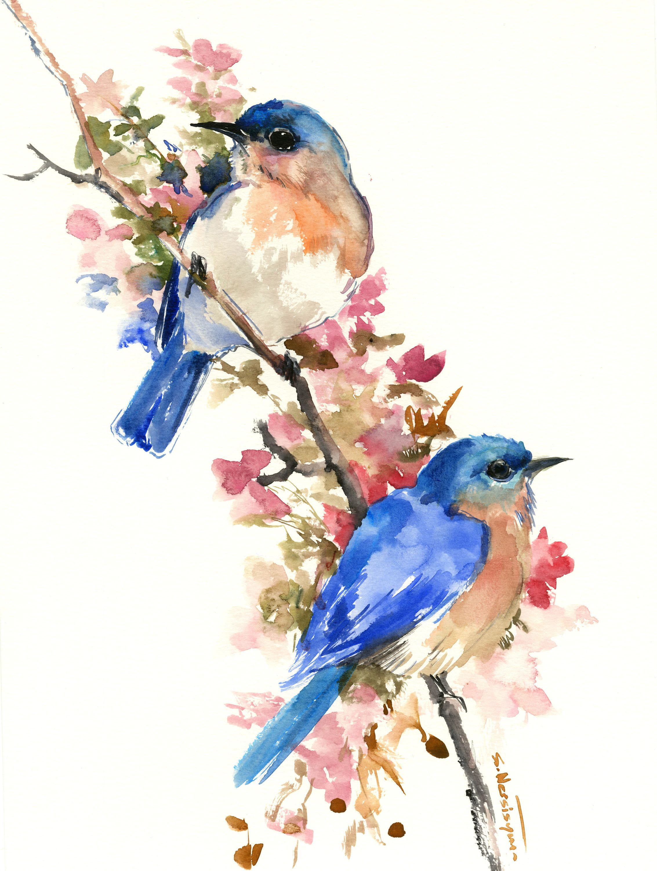 Bluebirds And Spring Artwork Original Painting Watercolor