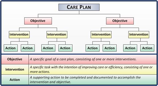 Care Plan Web   Care plans, Nursing care plan, How to plan