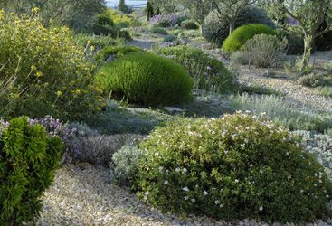 Photos scènes de jardin sec